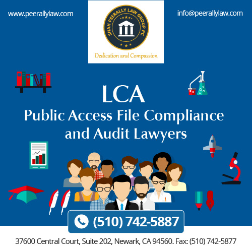 LCA Public Access File Compliance and Audit Lawyers