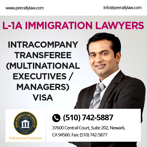 L1A Immigration Lawyer
