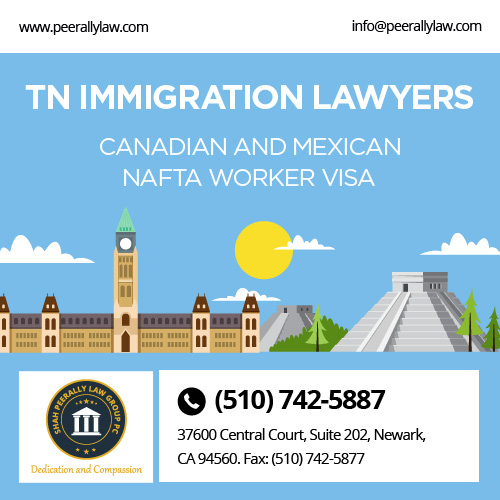 TN Immigration Lawyers